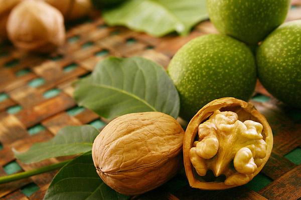 Грецкие орехи - Agrobiz.net