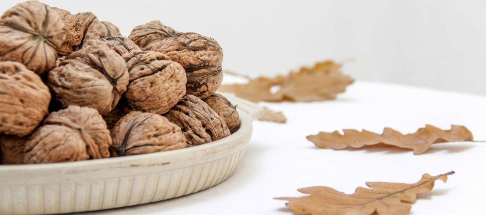 Грецкий орех: от посадки до ухода в одном материале - Agrobiz.net
